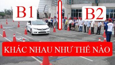 Nên học bằng lái xe ô tô B1 hay bằng lái xe ô tô B2